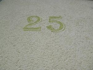 Les numéros font à peu près 20 centimètres de haut.